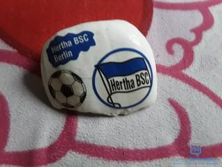 Verkaufe Fanstein von Hertha BSC Berlin