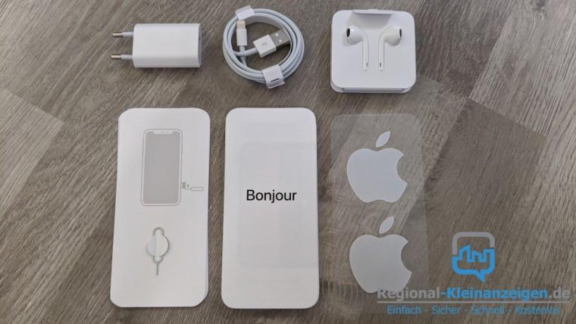 iphone-11-big-3